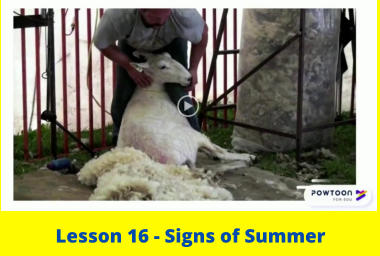 Lesson 16 - Signs of Summer