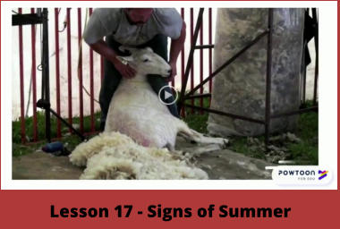 Lesson 17 - Signs of Summer
